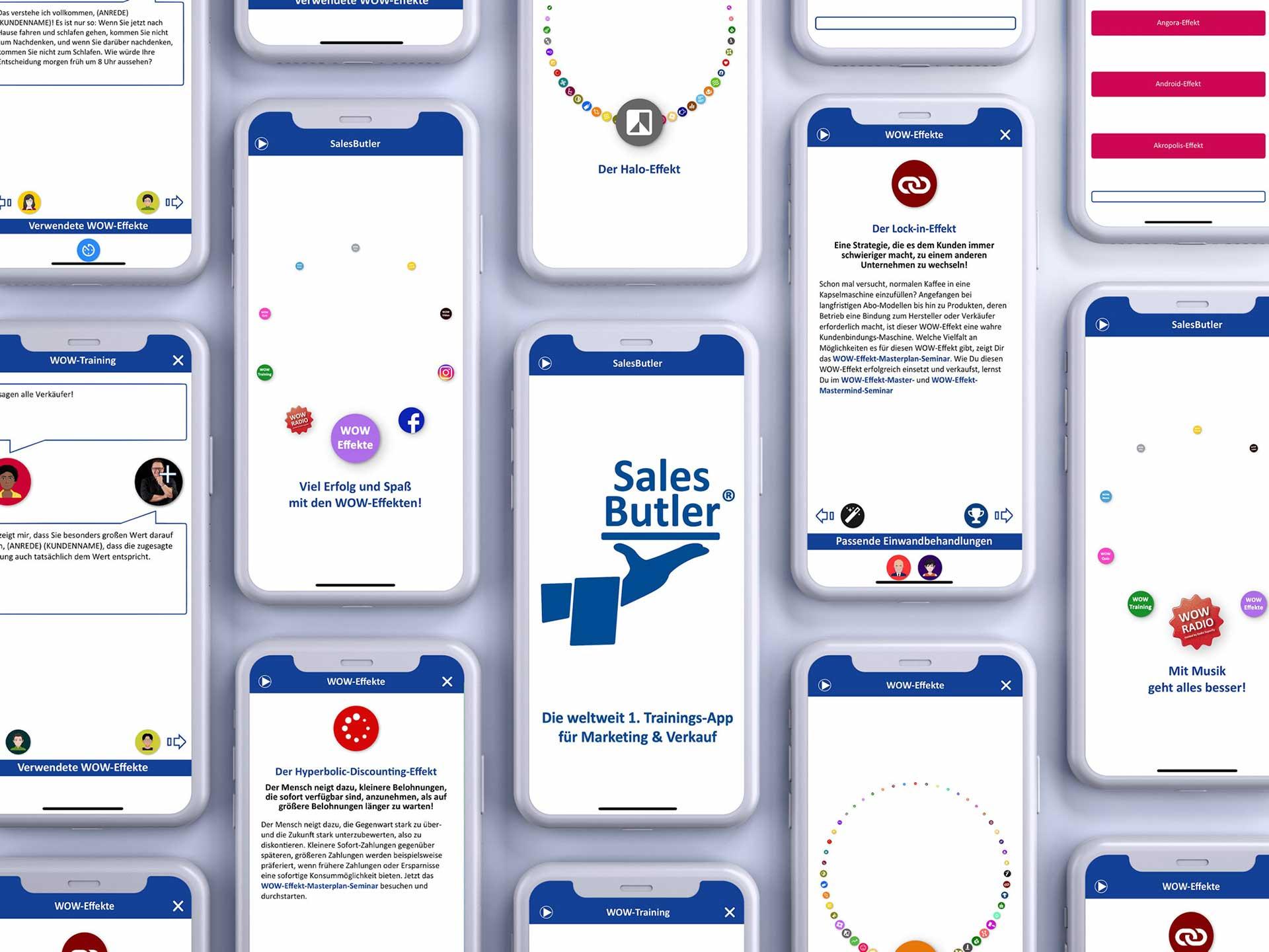 Die vielen Möglichkeiten in der SalesButler®-App